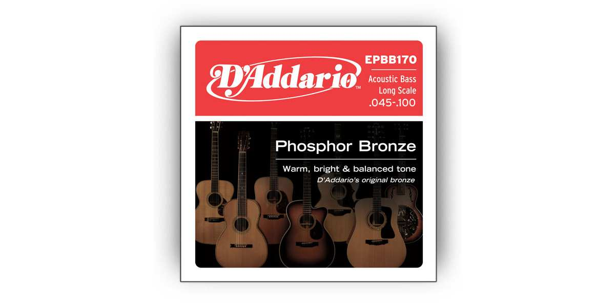 D'Addario EPBB-170 Akustik Bass Saiten 45-100