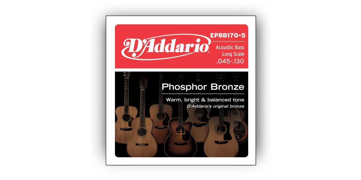 D'Addario EPBB170-5  Phosphor Bronze Akustik Bass Saiten 045-130