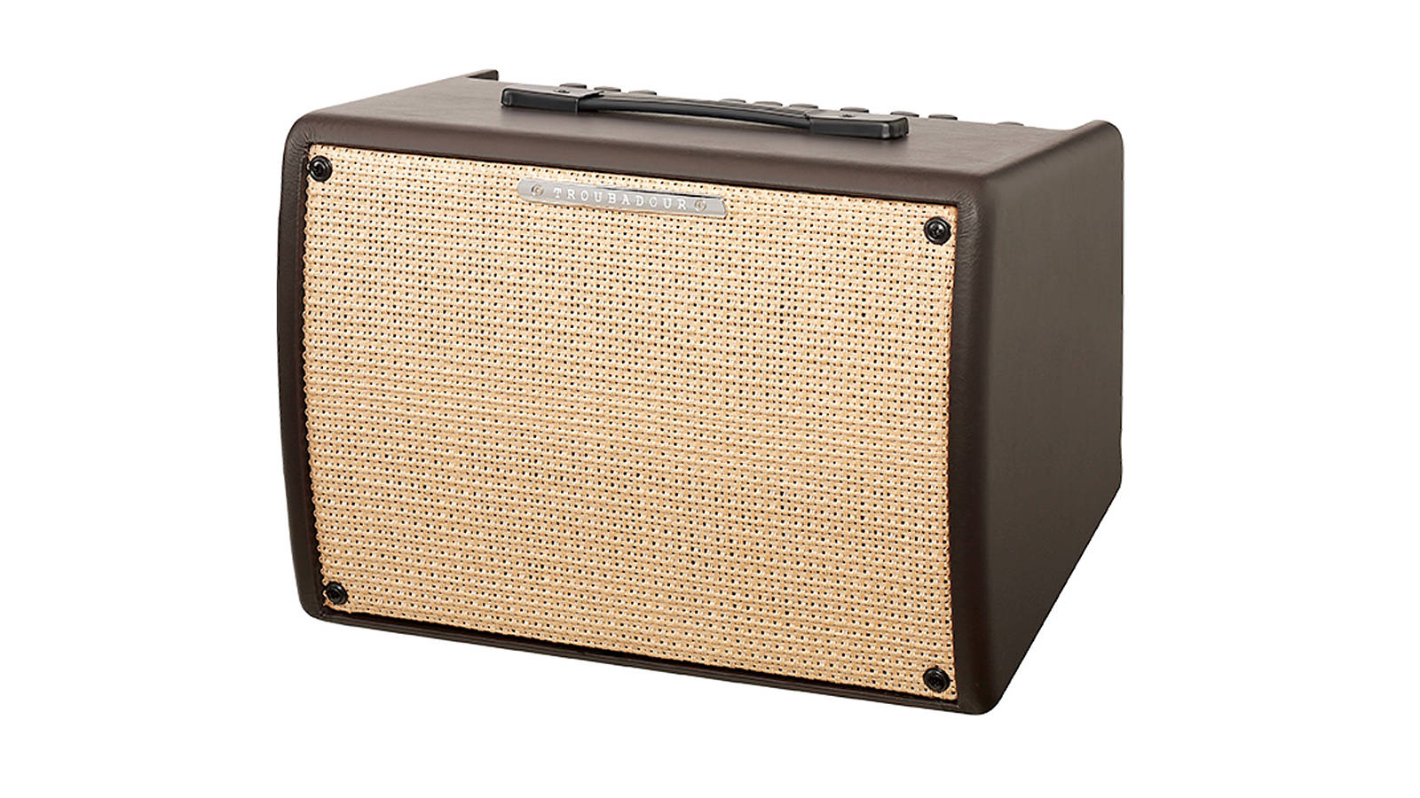Ibanez T30II Troubadour Acoustic Amp