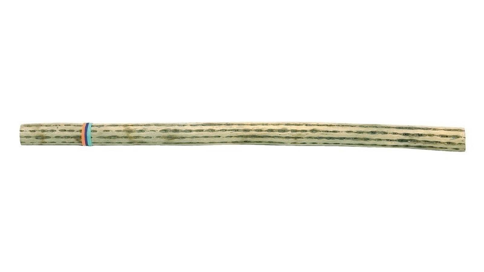 Kamballa Regenmacher Kaktus 1m