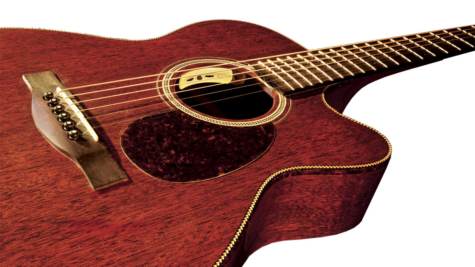 LR Baggs Anthem Acoustic Piezo + Mic