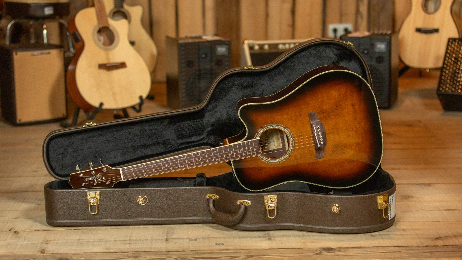 Takamine Custom Ltd. Dreadnought VTS