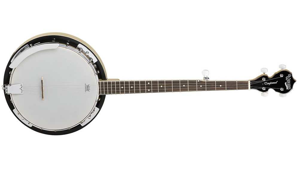 Tanglewood TWB18M5 Union Banjo