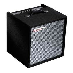 Ashdown Perfect Ten Bass Combo