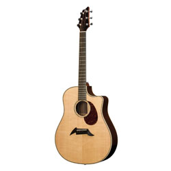 Breedlove D25SR Herringbone Pro Westerngitarre