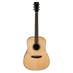 Breedlove DSR Roots Westerngitarre