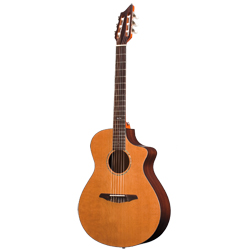 Breedlove N250CR Atlas Studio Nylon/C Konzertgitarre