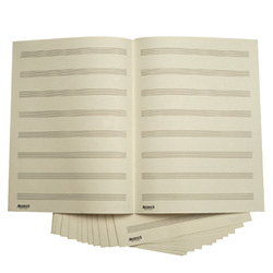 Daddario D12ST doppelseitige Notenblätter 12 Notenbalken