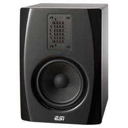 ESI uniK 05 aktives Monitor Paar