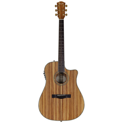 Fender CD-220 SCE All Zebrano Westerngitarre