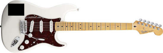 Fender DLX Roadhouse Stratocaster MN BK