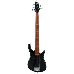 Fender Dimension V Bass RW black
