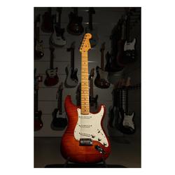 Fender Select Stratocaster MN DCB