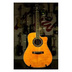 Fender T-Bucket 300 FM CE Orange