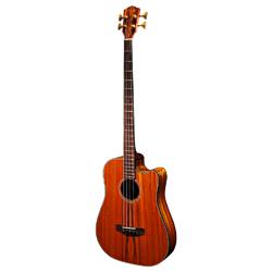 Fender Victor Bailey Acoustic Bass 4-Saiter