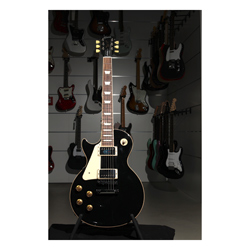 Gibson Les Paul Standard Traditional EB LH