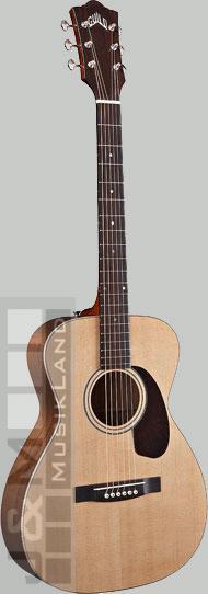 Guild GAD F-20 ITB Western-Gitarre