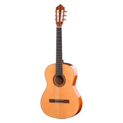 Höfner HM-75 F Meister Konzertgitarre
