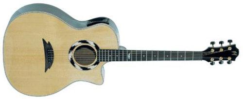 Hohner EBAE G-2933 Acoustic inkl. Koffer & Ständer