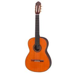 Hopf Nr. 49 Conservatory 1 Klassikgitarre