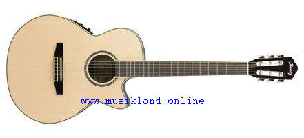 Ibanez AEG10 NE-NT Konzertgitarre