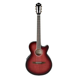 Ibanez AEG24NII-THS Konzertgitarre
