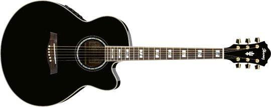 Ibanez AEL-30 SE BK Westerngitarre