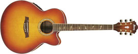 Ibanez AEL-40SE-RVV Western Gitarre