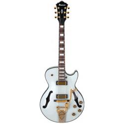 Ibanez AGR73 T TSW E-Gitarre