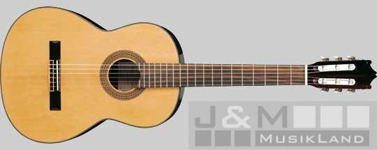 Ibanez G-100 NT Konzertgitarre
