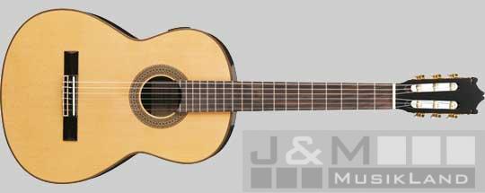 Ibanez G-200 E-NT Konzertgitarre