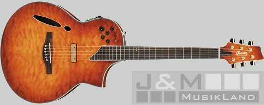 Ibanez MSC-650 VV Elektro Akustik Gitarre