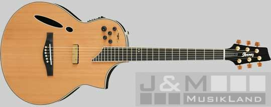 ibanez msc 700 nt elektro akustik gitarre. Black Bedroom Furniture Sets. Home Design Ideas