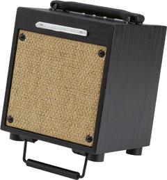 Ibanez T-10 Acoustic Combo Troubadour