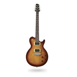Line 6 JTV-59 James Tyler Variax Modeling-Gitarre