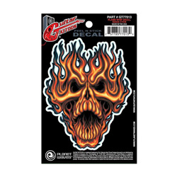 PlanetWaves GT77013 Guitar Tattoo - Flame Whip Skull