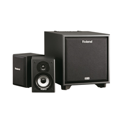 Roland CM-220 2.1 Monitor-System