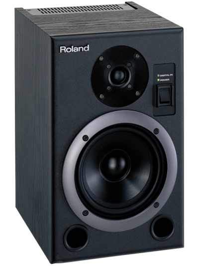 Roland DS-5 BI-Amp Monitor