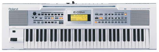Roland E-09 w Keyboard