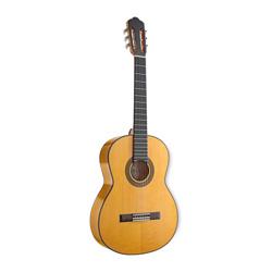 Stagg CF1246S Flamenco Gitarre