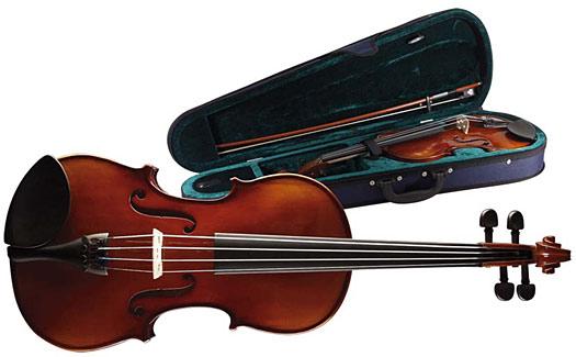 Stagg VN-4/4 Violine inkl. Softcase