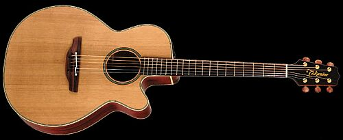 Takamine EAN-40 CX Natural
