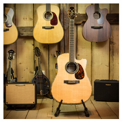 Takamine EF36 Dreadnought Special Rose