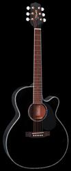 Takamine EG-541 DLX BLK Westerngitarre