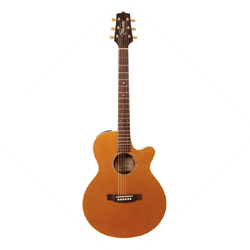 Takamine EG269VGT FXC Westerngitarre