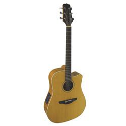 Takamine EG510SC Westerngitarre