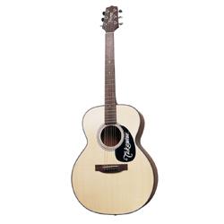 Takamine G220 NEX Westerngitarre