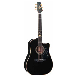 Takamine LTD 2012 MICHI Limited Westerngitarre