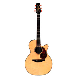 Takamine TAN-46 C Supernatural Westerngitarre