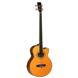 Tanglewood 55 AB FR-B Sundance Acoustic Bass Fretless
